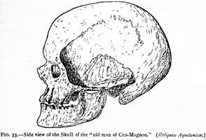 Cro-Magnon Side view of the Skull