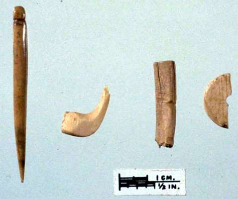 meadowcroft bone fragments