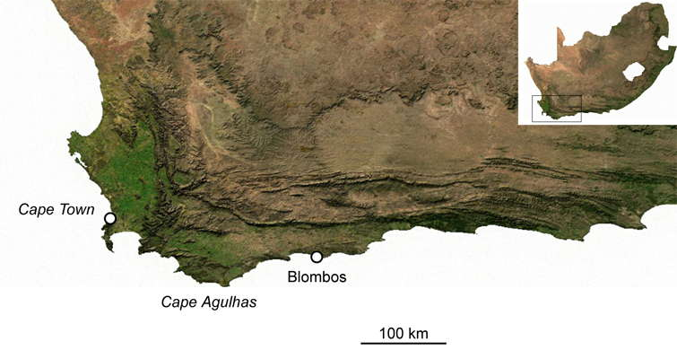 Blombos Cave Map