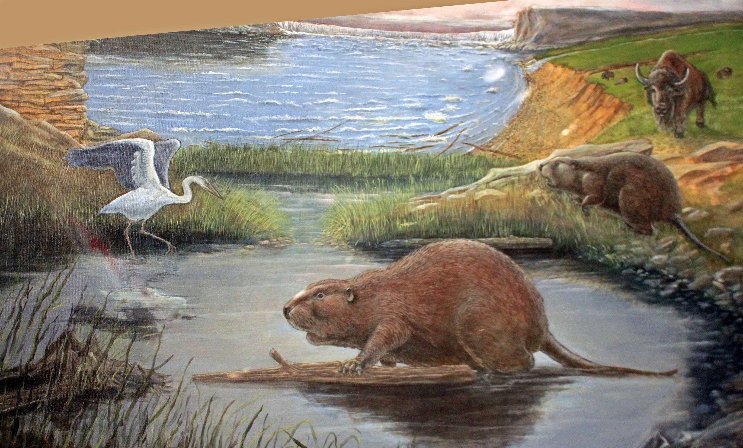 giant animals north america - HD2600×1569