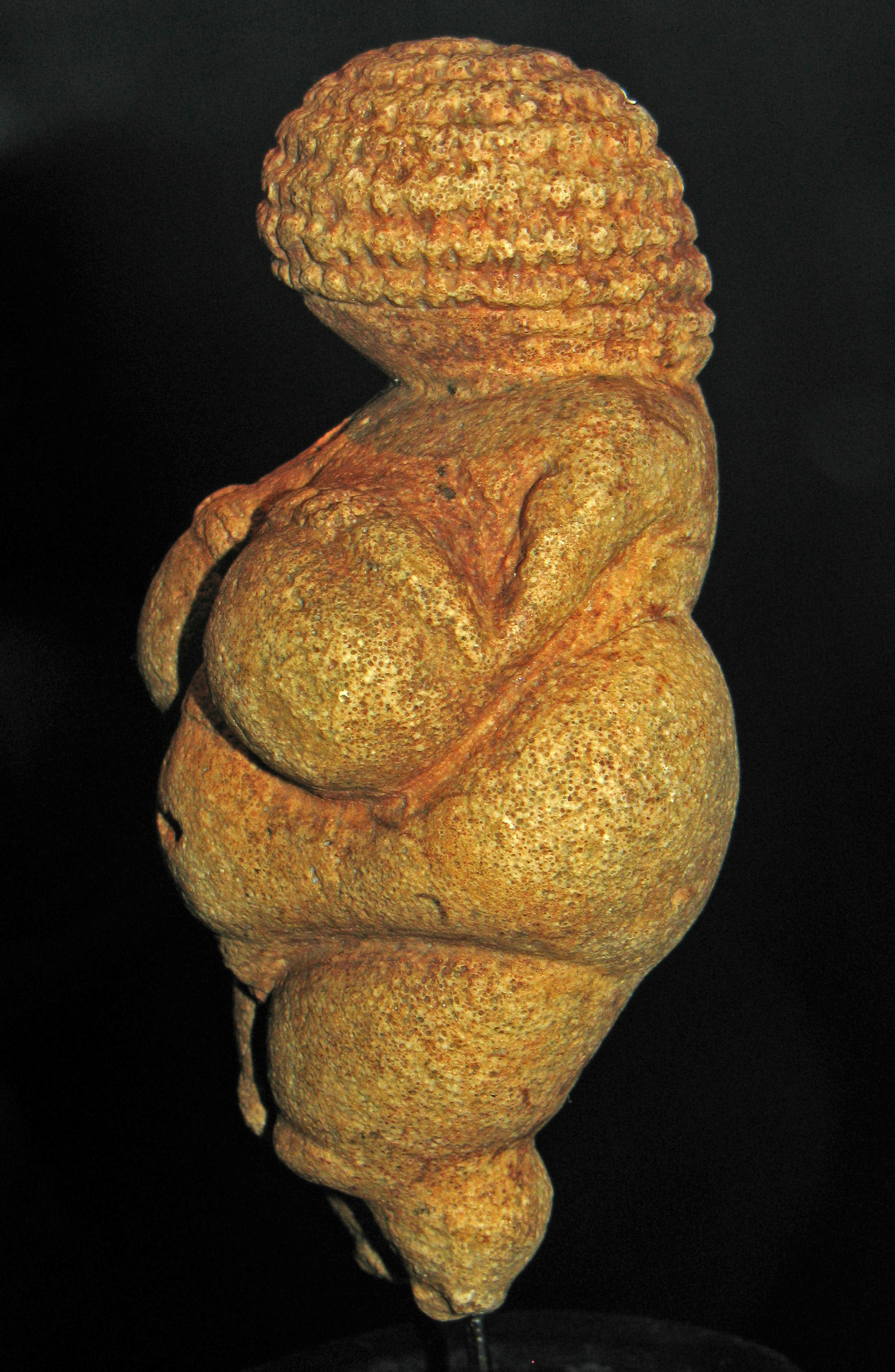 venus of willendorf essay Venus of willendorf contribute an essay the paleolithic sculptor who made this small figurine would never have named it the venus of willendorf venus was.