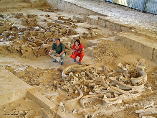 mammoth bone dwellings